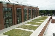 """Cone Health officials touted the sustainable elements of the North Tower, including the """"green roof"""" and solar panels that help reduce energy consumption and the building's environmental impact."""