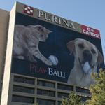 Lawsuit alleges Purina's Beneful can harm, kill dogs