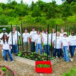 Forsyth groups lead in statewide United Way awards