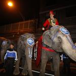 With elephants leaving Ringling Bros., we have one question: What about the poo?
