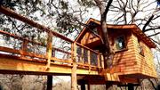 The treehouse spa is an unusual new amenity at the Davis Ranch Retreat southeast of Austin.