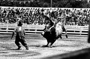 Long Gone: Frontier Town in North Hudson, NY, recreated the Old West, complete with rodeo.