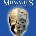 Mummies, guitars and kids: See what the Orlando Science Center has in store