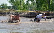 In this obstacle, competitors had to crawl under ropes through a pit of water and mud.