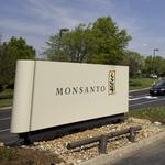 Monsanto executives discussing yet another Syngenta offer: Report