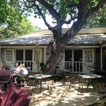 Chef Mark Noguchi opens cafe at Hawaiian Mission Houses Museum