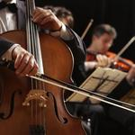 Symphony COO Blakeman tapped to lead Tucson Symphony Orchestra