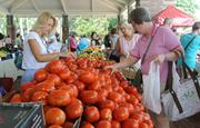 The weekly farmer's market draws a huge crowd and several Plant Street shops have a presence there.