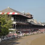 Hearing scheduled on Saratoga Race Course improvements