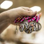 Fiesta medals provide boost for SA manufacturers