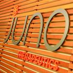 Juno makes key hire from Amgen to bolster commercialization efforts