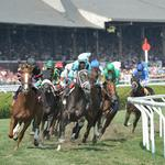 Lawmakers push to privatize New York racing