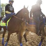 Will Triple Crown give horse racing a natural boost?