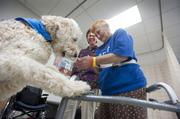 Lily, a therapy dog at Southern Indiana Rehabilitation Hospital, gets a treat from patient Edie Bradley LaDuke while therapist Deb Strickler, Lily's handler, watches.