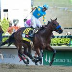 American Pharoah's next race will be in August