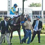 Louisville company approved to sell licensed American Pharoah Triple Crown merchandise