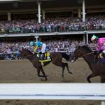A sure bet: You can see American Pharoah Saturday night at Churchill Downs