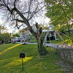 Google Glass gives inside look of Barnstable Brown Gala (Video)