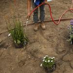 Builders turn to 'greywater' at construction sites