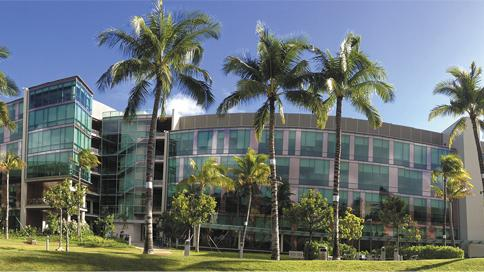 University of Hawaii Cancer Center merging with University