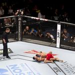 New York could become the 50th state to legalize pro MMA