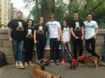 'Uber for dog walking' comes to New York City with Wag launch