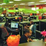Maitland software firm inks major national client, driving up its local job creation