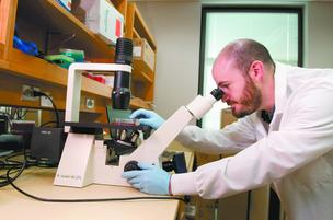Erik Westin studies blood disorders like sickle-cell anemia at UAB.  The school could lose research funding due to sequestration.