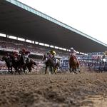 Chairman of New York Racing Association takes leave of absence