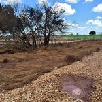 Costly clean up continues for Encana east of Karnes City