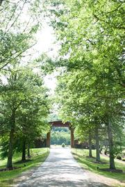 The driveway to Southern Living's Idea House at Fontanel.