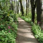 For $1.5M, Portland's Forest Park gets its first formal entrance, nature center