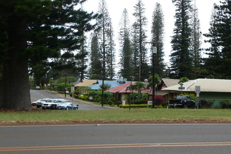 Larry Ellison's Pulama Lanai is holding a community meeting next week to discuss planned renovations to several properties in Lanai City.