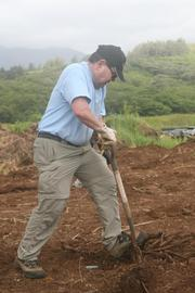 Kent Tsukamoto of Accuity clears out roots and weeds from a taro patch along with other volunteers from Accuity, who joined Kakoo Oiwi last month to help maintain the taro patches and gardens within the Heeia wetlands. Kakoo Oiwi is a community-based nonprofit organization whose mission is to strengthen the community through the perpetuation of the Hawaiian culture and practice.