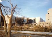 The government center in south Miami-Dade County is surrounded by defoliated trees.