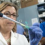 Brain drain: Physician-scientists play vital role in medical research