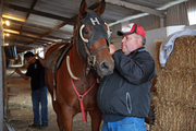 Trainer Jim Fergeson adjusts a bridle for an early morning workout.