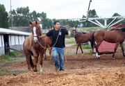 Trainer Jim Fergeson's groom, Jesus Sanchez, walks a horse to the barn at Portland Meadows.