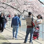 Why D.C. saw more money in tourism last year (Video)