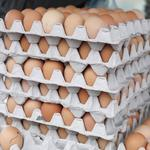 Amid 'Just Mayo' investigation, egg industry leader retires early