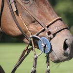 Scottsdale polo championships add high tea, symphony for October event