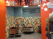 For $10, customers can wash and dry their dogs.