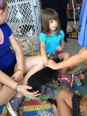 Harper Beeke, 3, spends some time with puppies for adoption.