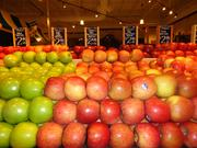The Fresh Market's produce department has more than 400 items and a large organic selection.