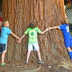Eastmoreland neighbors: Sequoias deal is finalized