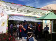 The Tinker Bell Butterfly House was a nice touch to bring guests close to butterflies.