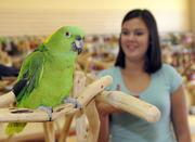 Sonia Mathews checks out a yellow-naped parrot at Parrot Planet. The store is expected to open at the end of the month. Parrot Planet won't be just a store, the owners say. Essentially, it also will be a zoo, library, educational museum, support group and adoption service for rescued parrots.
