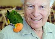 Crayon the caique sits on the shoulder of Paul Moss at Parrot Planet. Parrot Planet, which is opening in the former Knotts Pharmacy at 48th and J streets, will sell parrots and their food, cages, vitamins and toys.
