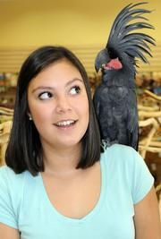 Guinness, a black palm cockatoo, sits on the shoulder of Sonia Mathews at Parrot Planet.