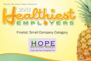 2013 Healthiest Employers Finalist Hope Services Hawaii